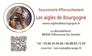 vign_businesscard